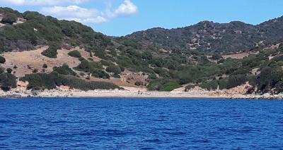 Riu Trottu