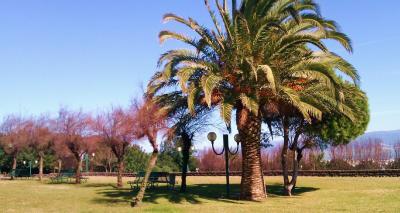 Parco Colle di San Michele