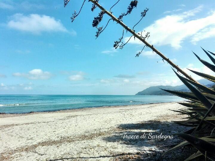 Spiaggia di Foxi de Lioni