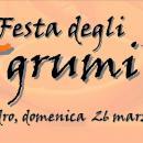 Festa degli Agrumi di Villacidro, ecco il programma completo di Domenica 26 Marzo 2017