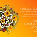 Primavera a Galtelli, Lanusei e Siniscola, ecco i programmi del 24 e 25 Giugno 2017