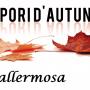 Sapori d'Autunno a Vallermosa, il programma del 28 e 29 Ottobre 2017