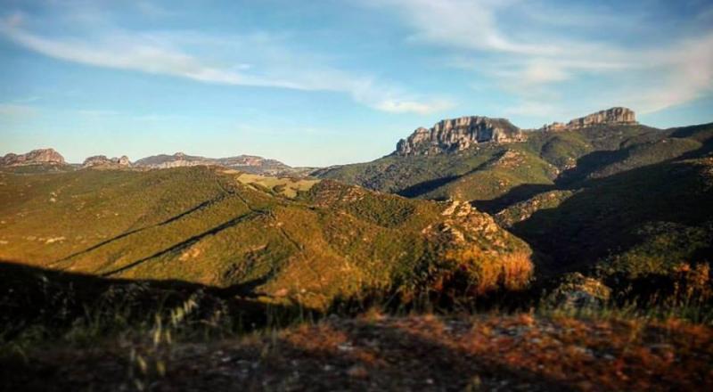Foresta di Bingionniga in Ogliastra