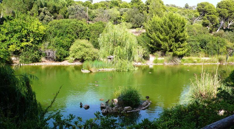 Parco Monte Urpinu