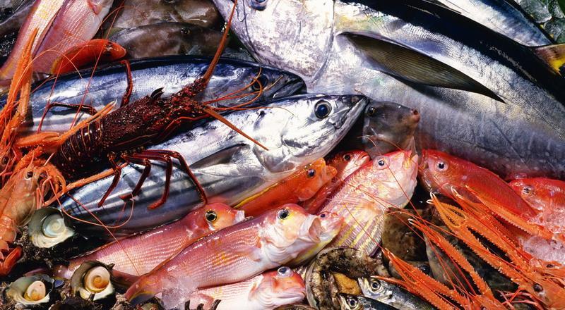 Sagra del Pesce - Golfo Aranci