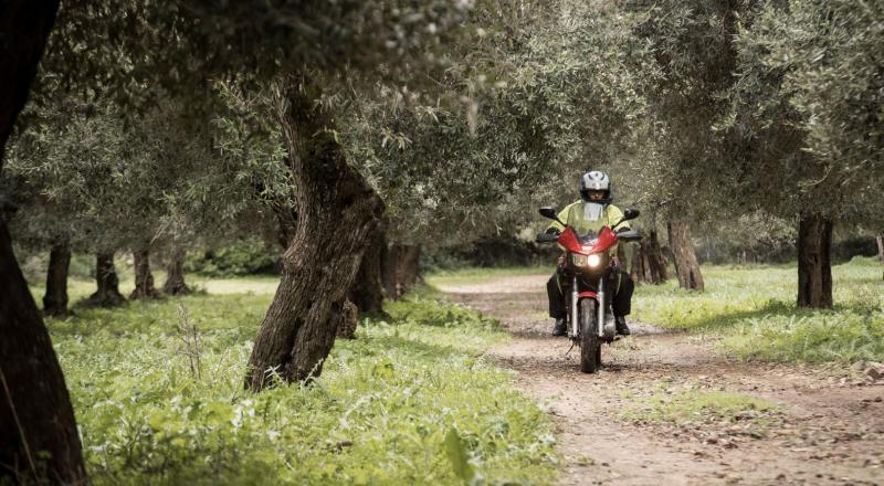 Raid degli Oliveti, appuntamento con il mototurismo in Sardegna