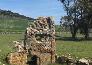 Stele Tomba dei giganti Cuaddu'e Nixias