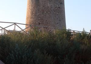 Torre Su Loi