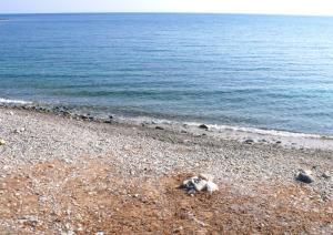 Is Mortorius - Spiaggia