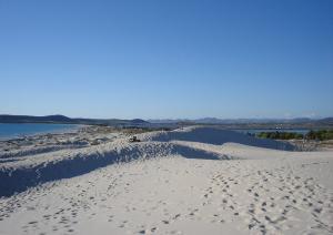 Porto Pino - dune