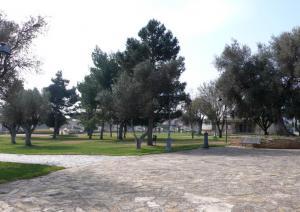 Chiesa di San Platano - parco